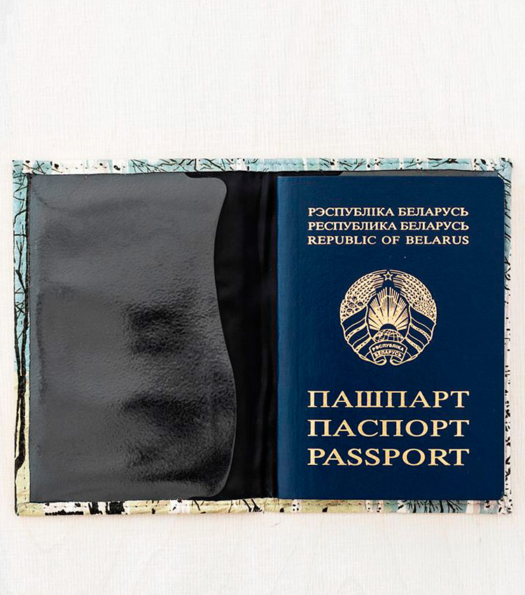 Обложка для паспорта Vokladki «Берёзы»
