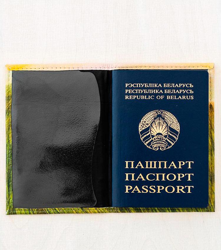 Обложка для паспорта Vokladki «Луг»