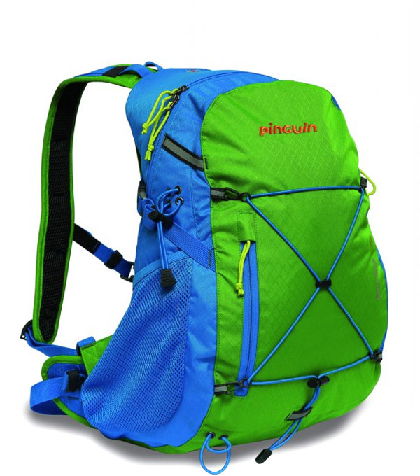 Рюкзак Pinguin Biker 25L blue-green